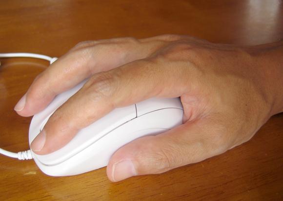 マウスを手で覆っている画像