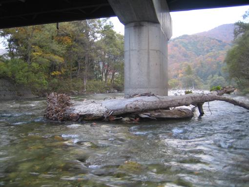 寒河江川 見附橋の様子