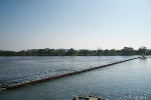新潟県村上市三面川のウライ