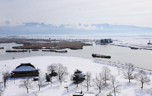福島潟の画像