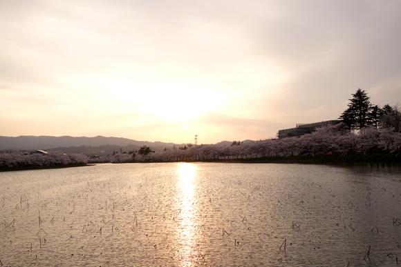 外掘り周りの夕日